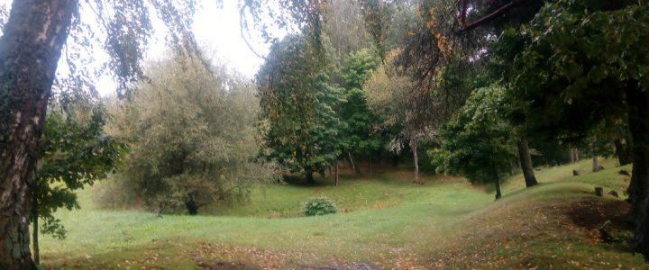 """28. septembrī pirmsskolā notiks tematiskais rīts """"Koki rudenī"""""""