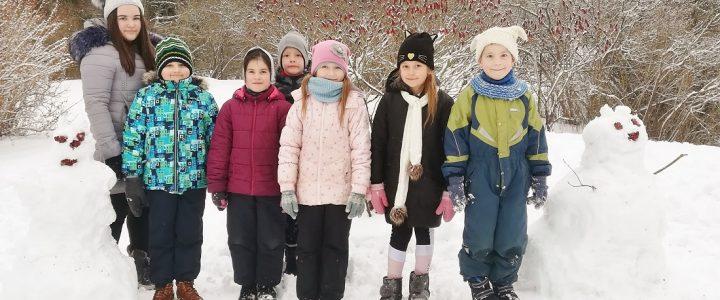 Sniega diena